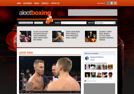 Aleet Boxing Large Screenshot